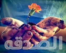 بالصور صور عن الصدقه , صور عن الصدقات 5454 2