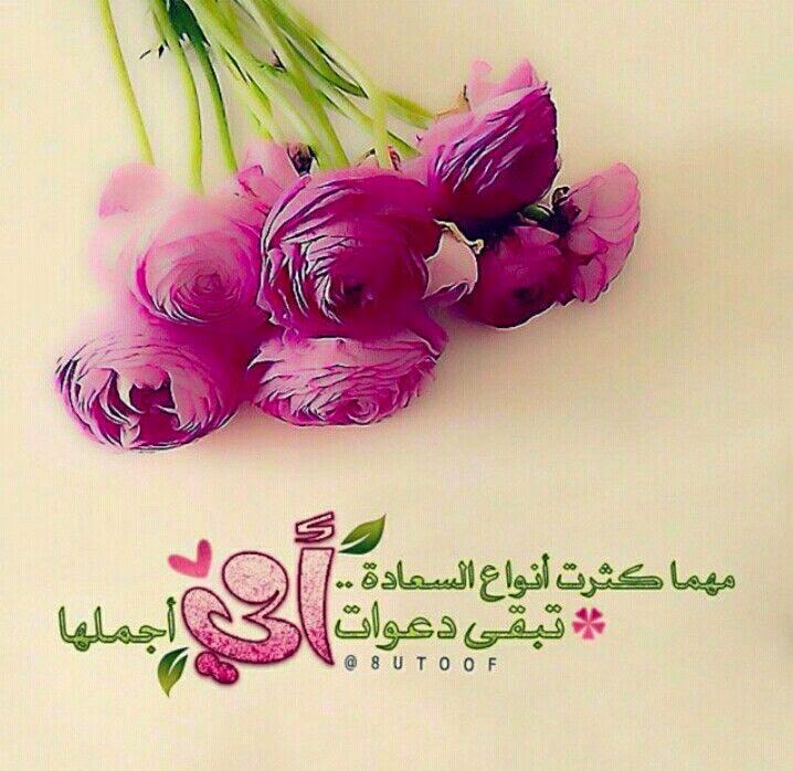 بالصور كلمات عن الورد , كلمات عن الورود رائعه 5456 5