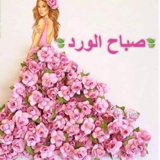 بالصور كلمات عن الورد , كلمات عن الورود رائعه 5456 6