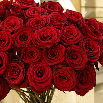 بالصور كلمات عن الورد , كلمات عن الورود رائعه 5456