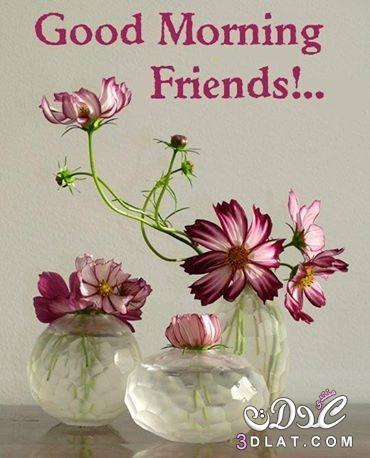 بالصور كلمات صباحية للاصدقاء , كلمات لاصدقاء صباحية جميله 5460 6