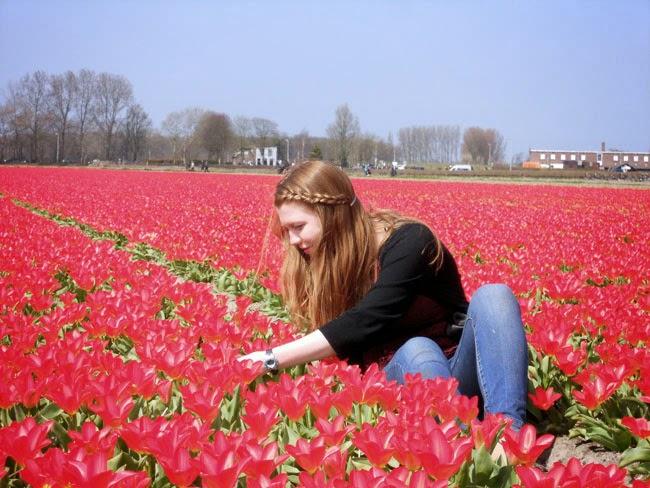 بالصور صور ورد صور ورد , اجمل الصور عن الورد 5480 6