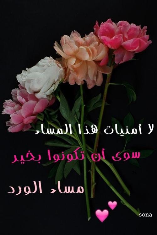 بالصور بطاقات مساء الورد , صور مكتوب عليها مساء الورد 5508 7