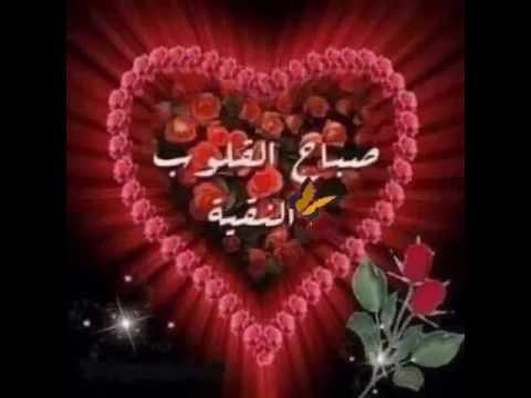 بالصور عبارات صباح الخير , صور لعبارات صباح الخير 5556 3