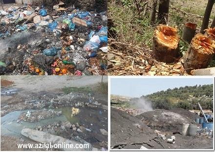 صور مشاكل البيئة , ماهى اكثر مشاكل البيئة