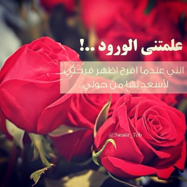 حكم عن الورد صور حكم عن الورد وداع وفراق
