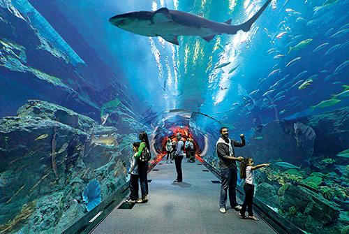 بالصور اماكن سياحية في دبي للعائلات , صور سياحية فى دبى للعلائلات 5584 7