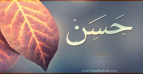 بالصور معنى اسم حسن , ماهو معنى اسم حسن 5635 3