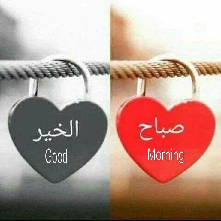 بالصور صور صباح الخير للحبيب , اجمل صور صباح الخير للحبيب 5731 5