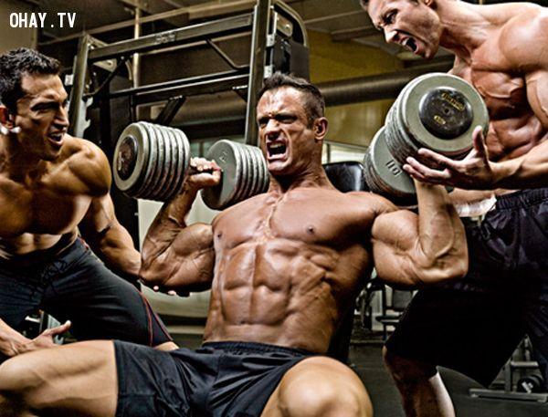 بالصور صور كمال اجسام , صور لرياضة كمال الاجسام 5925 6