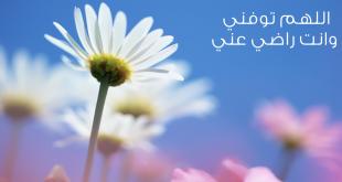 بالصور خلفيات دينيه , صور خلفيات اسلامية جميلة 4022 1 310x165