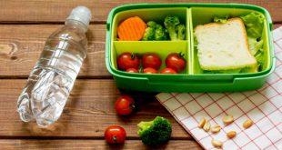 صورة وجبات صحية , الغذاء الصحي وخطر السمنة