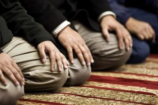 صورة ماهي اركان الصلاة , تعرف على اركان الصلاة في كتب السنة
