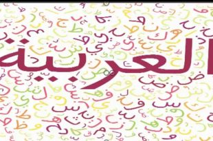 صورة معلومات عن اللغه العربيه , مكانة لغة الضاد