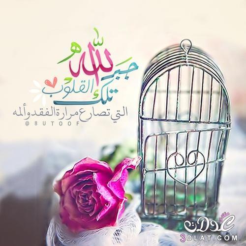 بالصور اجمل الصور الاسلامية المعبرة , صور اجمل صور اسلامية معبرة 5898 7