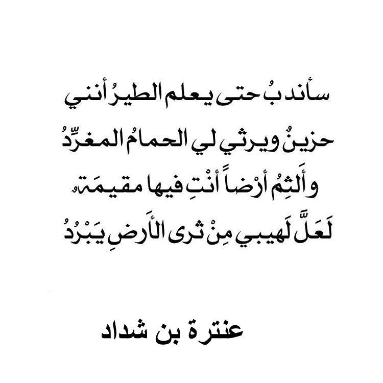بالصور شعر عربي فصيح , شعر اللغه العربيه الفصحه 1023 1