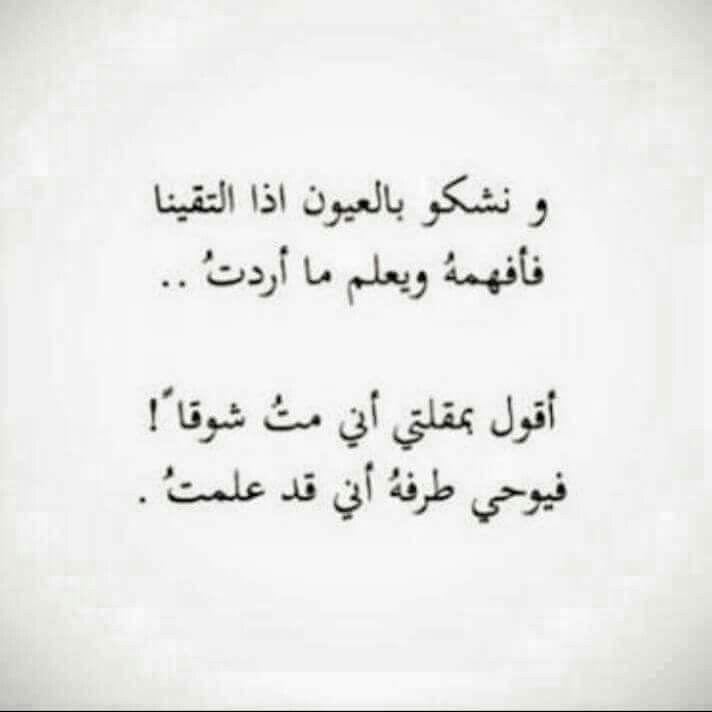 بالصور شعر عربي فصيح , شعر اللغه العربيه الفصحه 1023 6