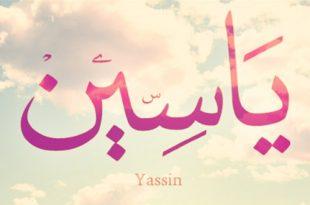 صور معنى اسم ياسين , ماذا يعنى اسم ياسين