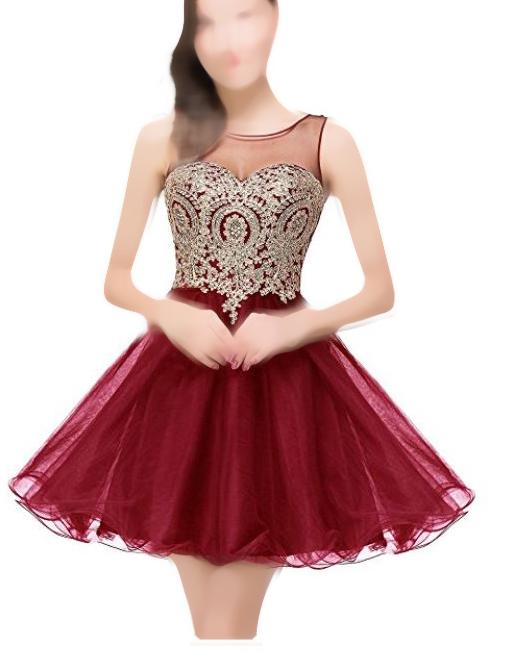 بالصور فساتين سهرة قصيرة 2019 , اجمل الفساتين القصيرة للسهرات 1698 1
