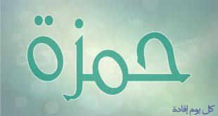 صورة معنى اسم حمزة , اسماء مقتبسه من الصحابه
