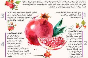 صور فوائد الرمان , الفواكهه و فوائدها للجسم