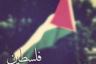 صور شعر عن فلسطين , قصائد عن فلسطين