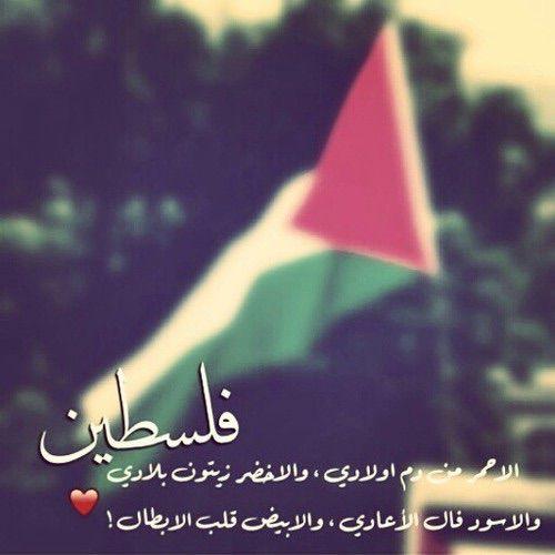 نتيجة بحث الصور عن صور عن فلسطين