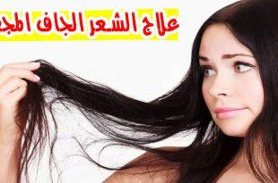 صور علاج الشعر الجاف , علاج الشعر الجاف بالفازلين