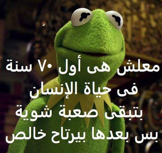 نتيجة بحث الصور عن قفشات مصريه مضحكه الضفدع