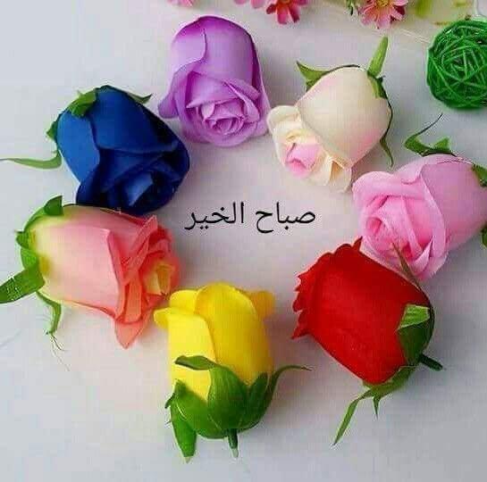 بالصور صباح الخير حبيبي , صباح الخير يا اجمل هدية 5252 4