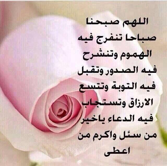 بالصور صباح الخير حبيبي , صباح الخير يا اجمل هدية 5252 5