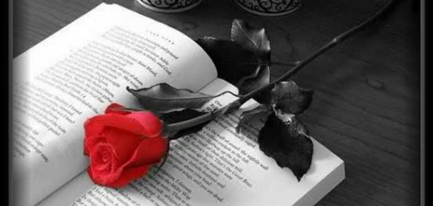 بالصور كلمات عن الشوق , اجمد كلمات عن الحب والشوق والحنين 5961 11