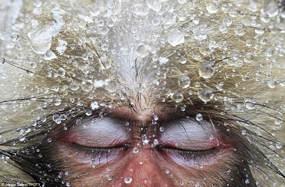 بالصور صورعالمية روعة , احلي صوره عالميه روعه 5962 15