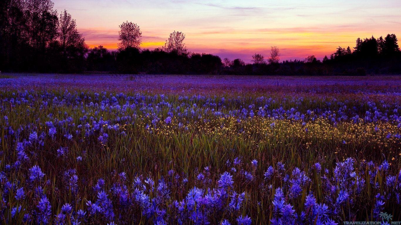بالصور مناظر طبيعيه روعه , اجمل صور مناظر طبيعيه خلابه 5969 3