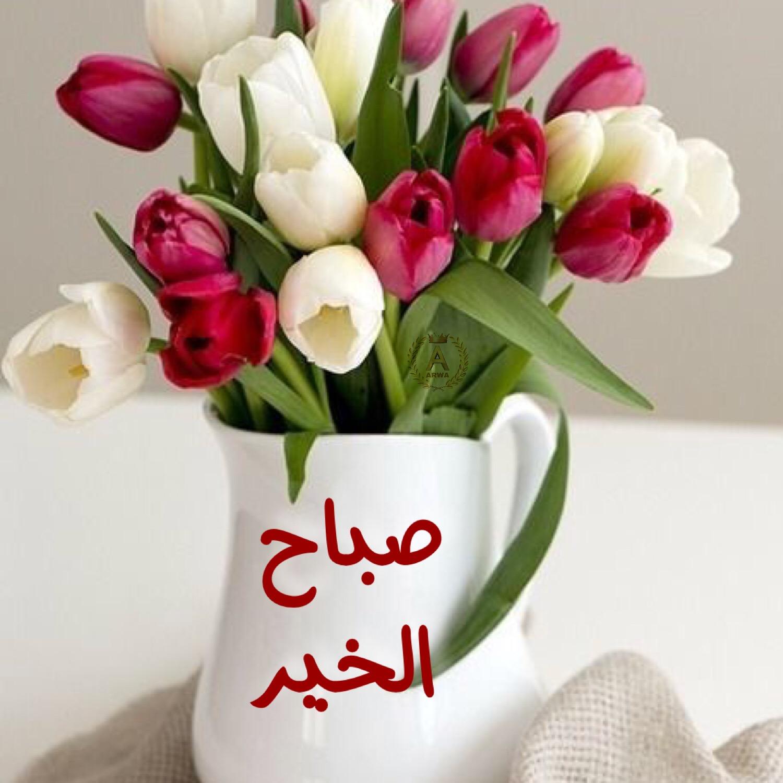 صور رسالة صباحية للحبيب , صور اجمل صباح الخير