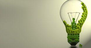بالصور خلفية خضراء , اجمل خلفية للكمبيوتر و تصميمات خضراء 6542 19 310x165