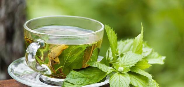 صورة اضرار الشاي الاخضر , ماهي اضرار الاكثار من شرب الشاي الاخضر