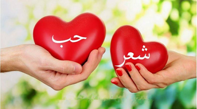 بالصور اشعار حب رومانسية , اجمل و احلى اشعار للحب 1192 9