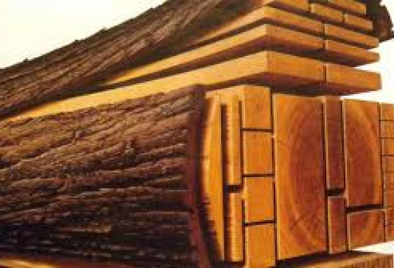 صور انواع الخشب , الخشب وملمسه من انواعه
