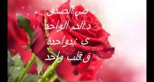 بالصور عبارات جميلة عن الصداقة , عبارات حب و احترام للاصدقاء 1315 11 310x165
