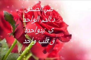 بالصور عبارات جميلة عن الصداقة , عبارات حب و احترام للاصدقاء 1315 11 310x205