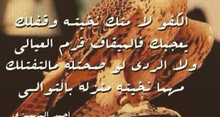 صورة ابيات شعر مدح , اجمل الاشعار فى مدح من نحب