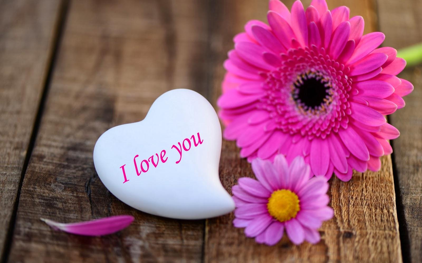 بالصور خلفيات رومانسية , الحب في خلفيه هاتفك 1350 10