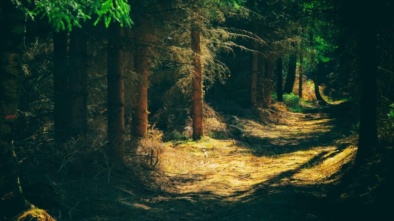 صورة صور مناظر طبيعيه , الهدوءو السلام و في صور