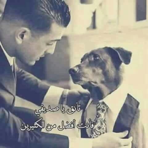 بالصور صور عن خيانة الصديق , صور توضح قسوة خيانة الاصدقاء 1369 7