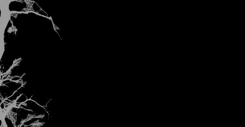 بالصور خلفية سوداء سادة , اناقة و فخامة الخلفيات السوداء 1381 9
