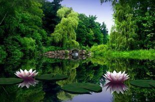 صور خلفيات طبيعة , اجمل وا حلى خلفيات مناظر طبيعيه