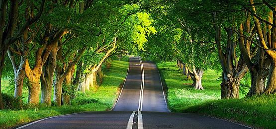 بالصور منظر جميل , روعة و جمال المناظر الطبيعيه الخلابه 1402
