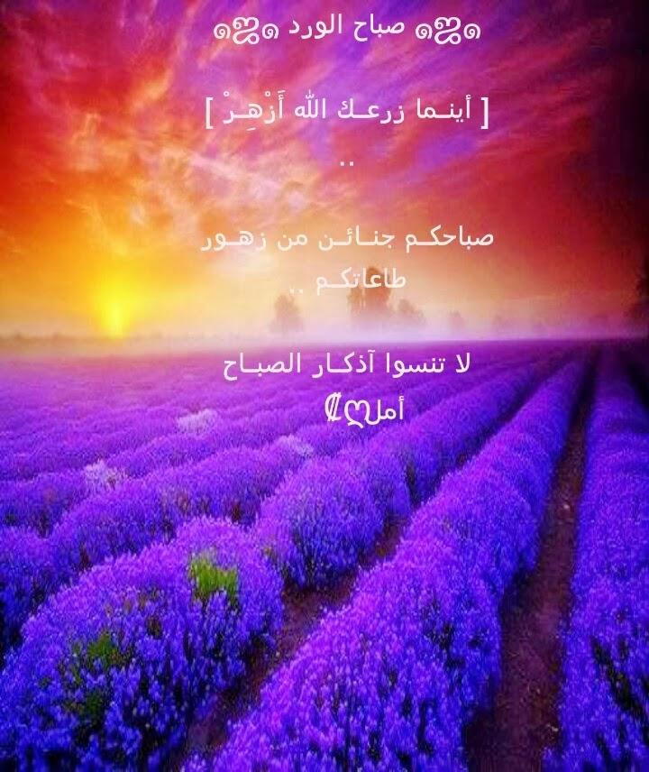 بالصور ادعية صباحية , دعا ء الصباح المبارك 1410 9
