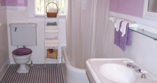 بالصور ديكورات حمامات صغيرة جدا وبسيطة , حسن استخدام مساحة الحمامات الصغيره بشكل صحيح 1431 12 310x165